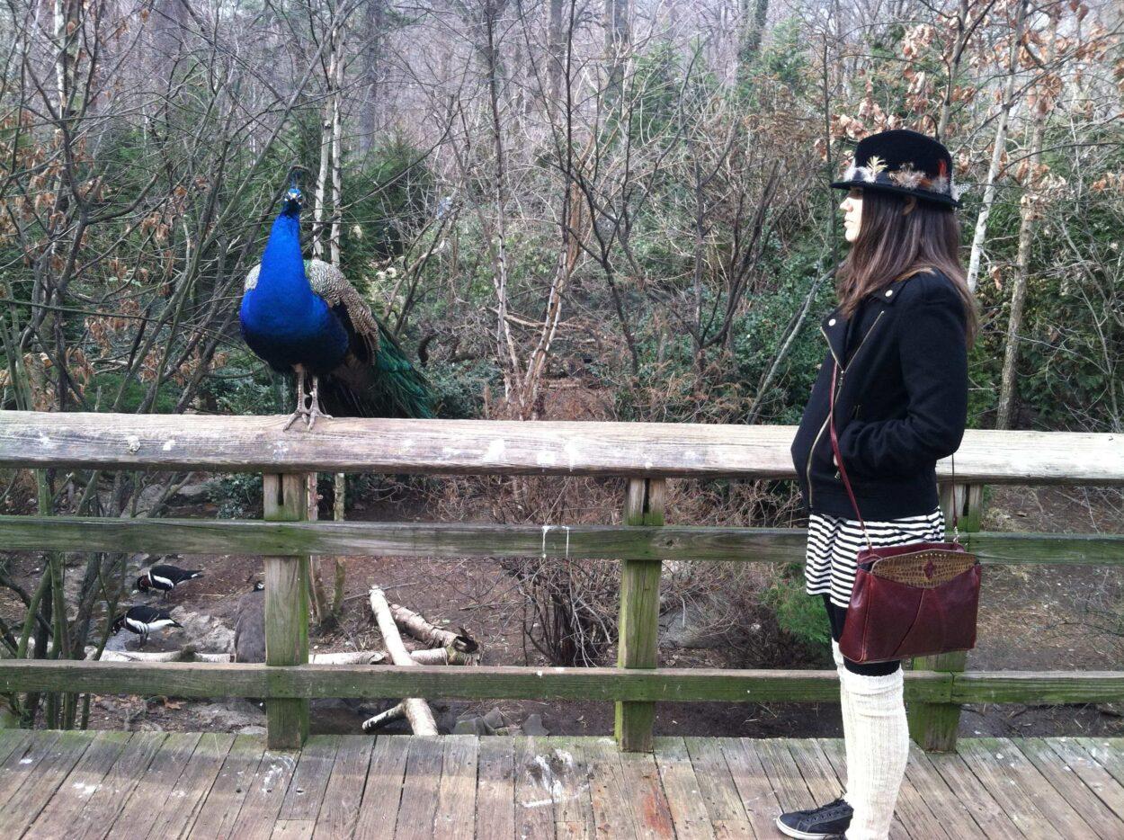 Prospect Park Zoo & Lakes